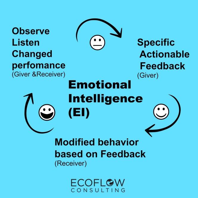 ei-feedback